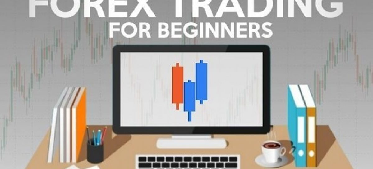 3 STANDARDS OF THE BEST FOREX BROKERS FOR BEGINNERS